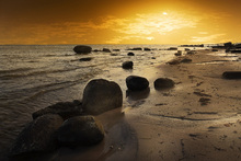 Wall mural - Golden Beach Sunset