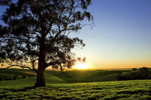 Wall mural - Beautiful Sunset Over a Rural Meadow