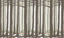 Fototapet - Studio Rita | Julia Heurling - Deep - Green