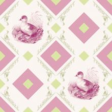 Wall mural - Duckling - Gooseframe - Pink Green