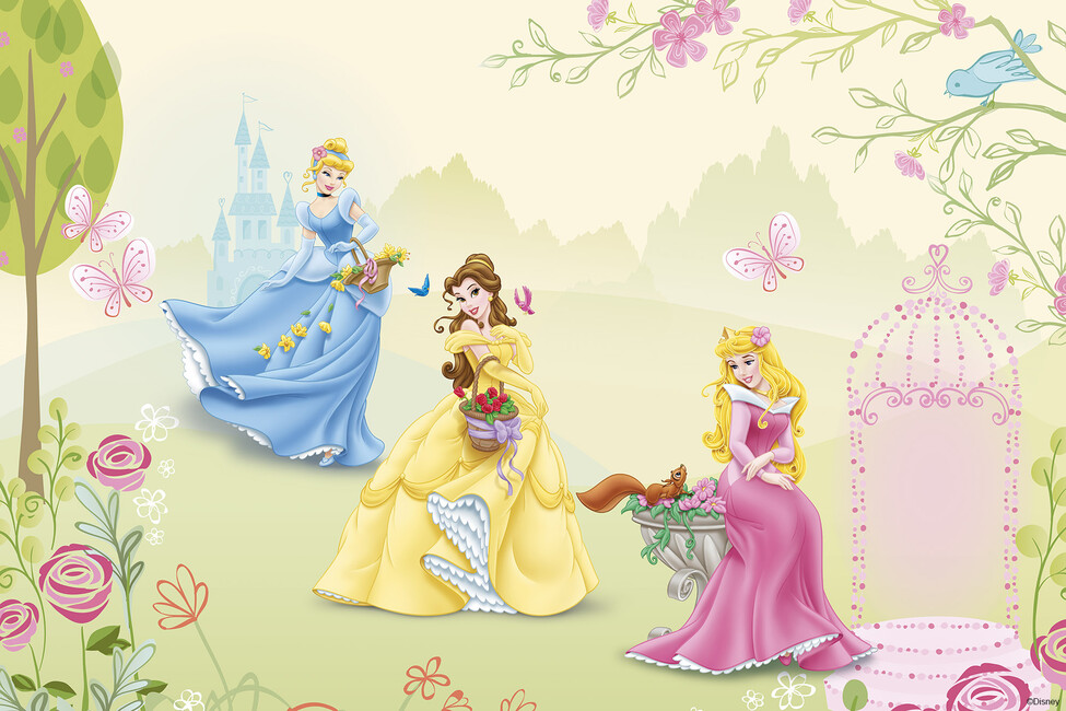 Princess Rose Garden Wall Mural Amp Photo Wallpaper