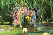 Wall mural - Fairies - Spirited and Spunky