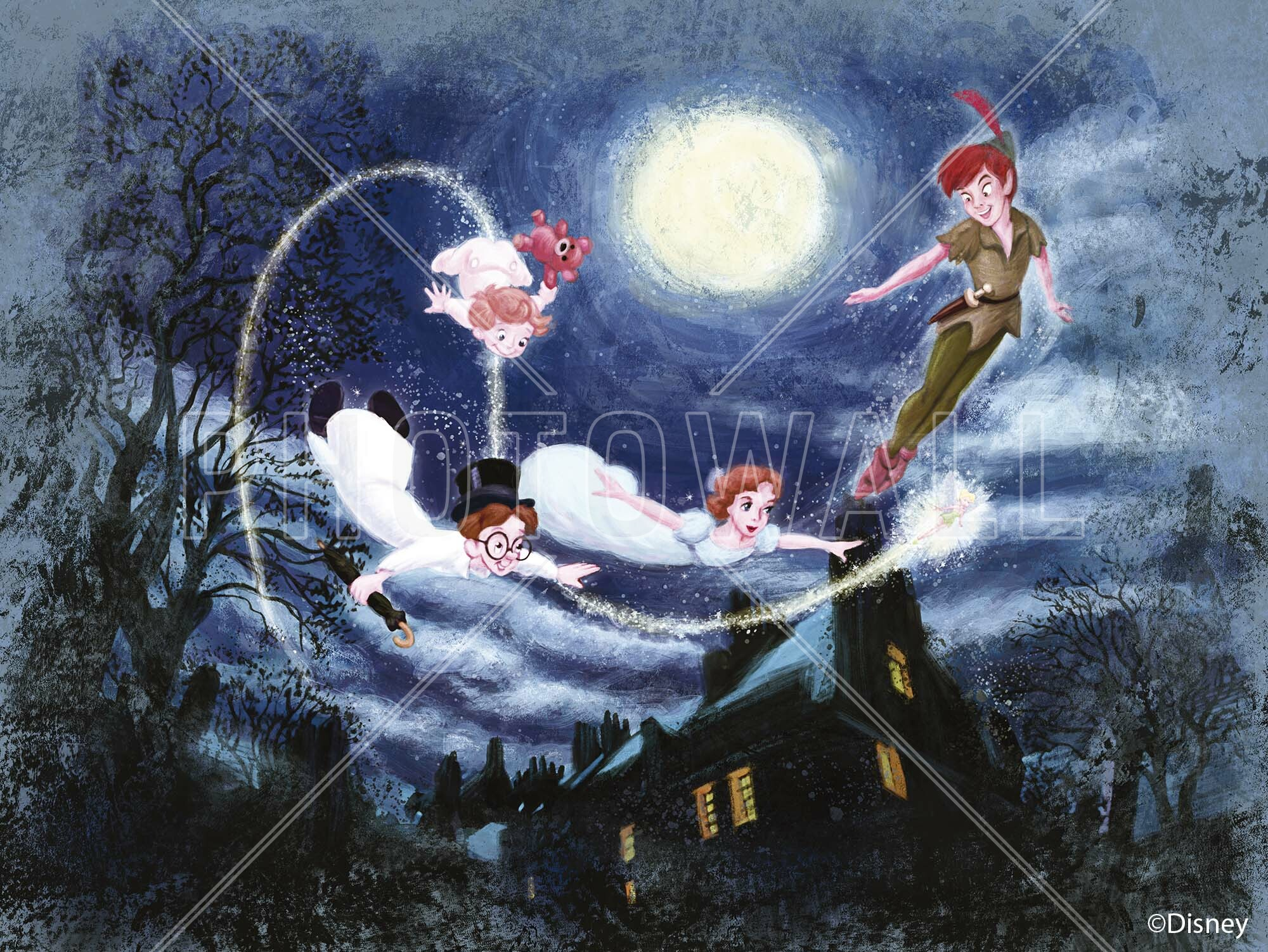 Disney Classics   Peter Pan