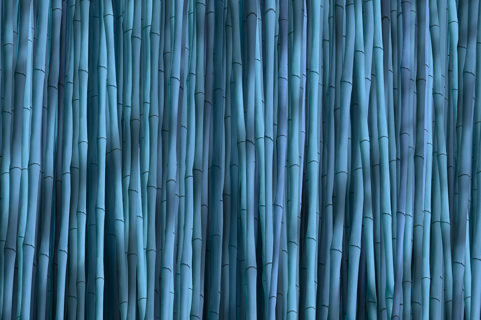 Bamboo blue wall mural photo wallpaper photowall for Bamboo mural wallpaper