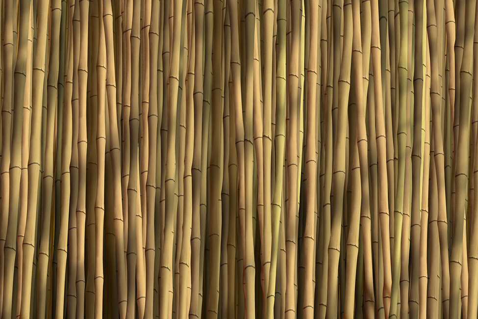Bamboo natural wall mural photo wallpaper photowall for Bamboo wall mural wallpaper