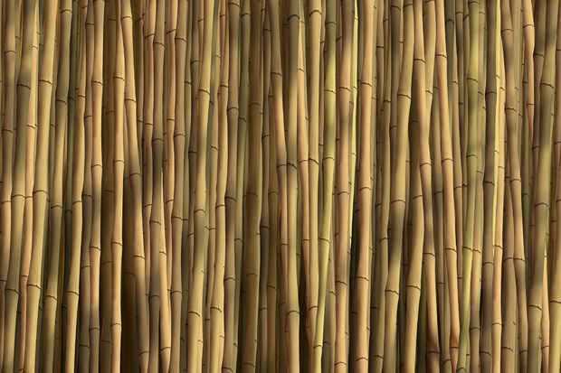 Bamboo natural wall mural photo wallpaper photowall for Bamboo wallpaper for walls