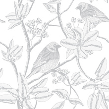 Wallpaper - Finch - White