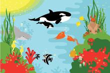 Wall mural - Sea Sneak Peek