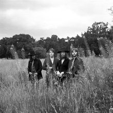 Canvastavla - Beatles - Field BW
