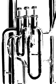 Canvas print - Brass Horn Graphic - Tuba