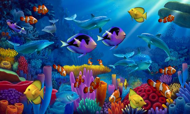 Ocean of color wall mural photo wallpaper photowall for Mural hidupan laut