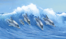 Canvas print - Leaping Dolphins