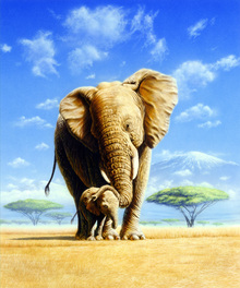 Canvas-taulu - Elephant Mother & Baby