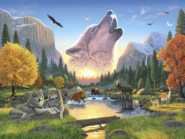 wilderness harmony wolf wall mural amp photo wallpaper nature wall murals by colette nature wall murals