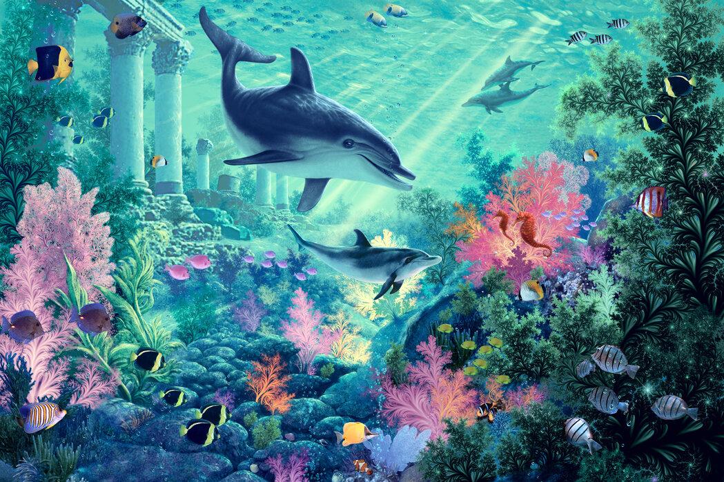 Dolphin Wallpaper For Walls : Dolphin Wallpaper For Walls dolphin photo wallpaper & wall murals ...