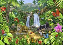 Fototapet - Rainforest Harmony