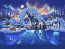 Fototapet - Arctic Harmony
