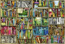 Canvas print - Fantasy Bookshelf
