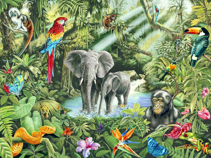 Jungle Wall Mural Amp Photo Wallpaper Photowall