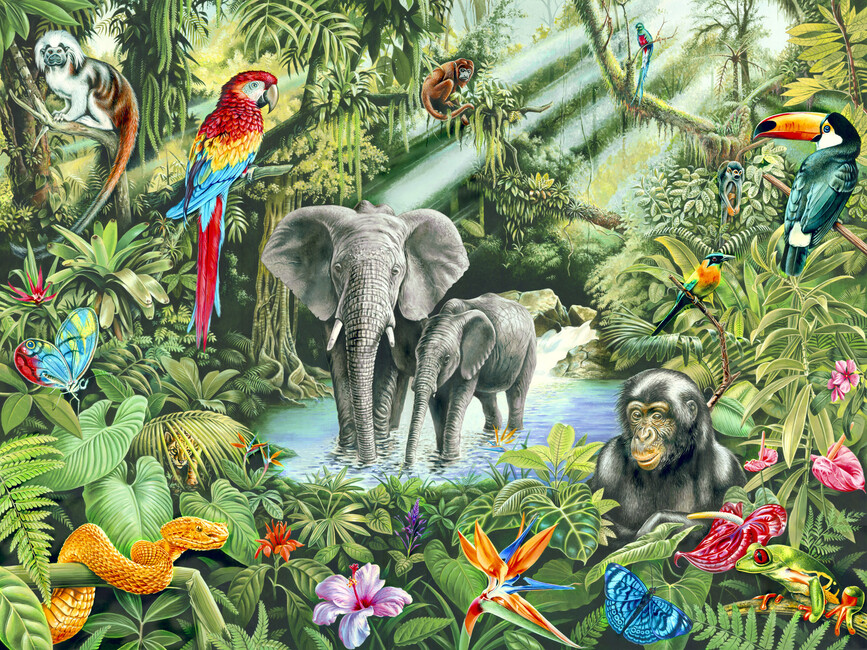 Jungle wall mural photo wallpaper photowall - Jungle wandtattoo ...