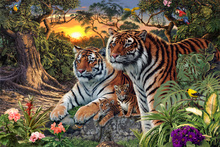 Wall mural - Hidden Images - Tigers