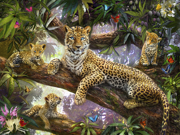 Tree Top Leopard Family Wall Mural Amp Photo Wallpaper