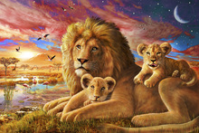 Wall Mural - Lion Sunrise