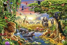 Wall Mural - Waterhole