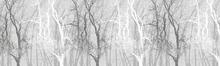 Fototapet - Wander Trees Charcoal