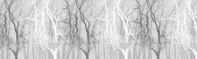 Wall Mural - Wander Trees Charcoal