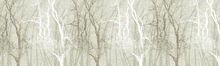 Wall mural - Wander Trees Sepia