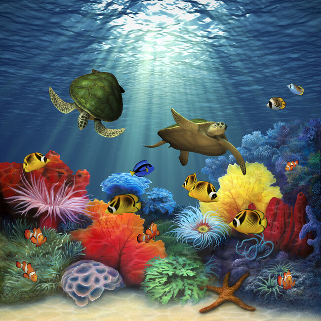 Coral sea wall mural photo wallpaper photowall - Sea coral wallpaper ...