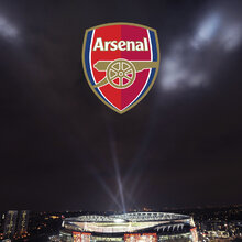Sports wallpaper wall mural photo wallpaper photowall for Emirates stadium mural