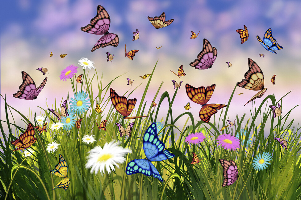 Butterfly dreams wall mural photo wallpaper photowall for Butterfly mural wallpaper