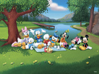 Fototapet - Mickey and Friends - Pond