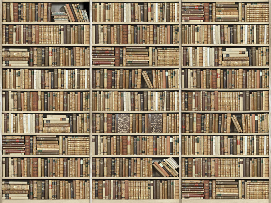 Bookshelf wooden beige wall mural photo wallpaper for Bookshelf mural wallpaper