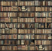 Wall mural - Bookshelf - Black - Brown
