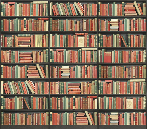 Bookshelf black red green wall mural photo for Bookshelf wall mural