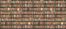 Wall mural - Bookshelf - Black - Red green - Long