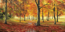 Canvas print - Herbstimpression