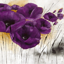 Wall mural - Pavot violet IV