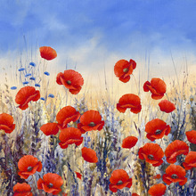 Canvas print - Sunset Poppies