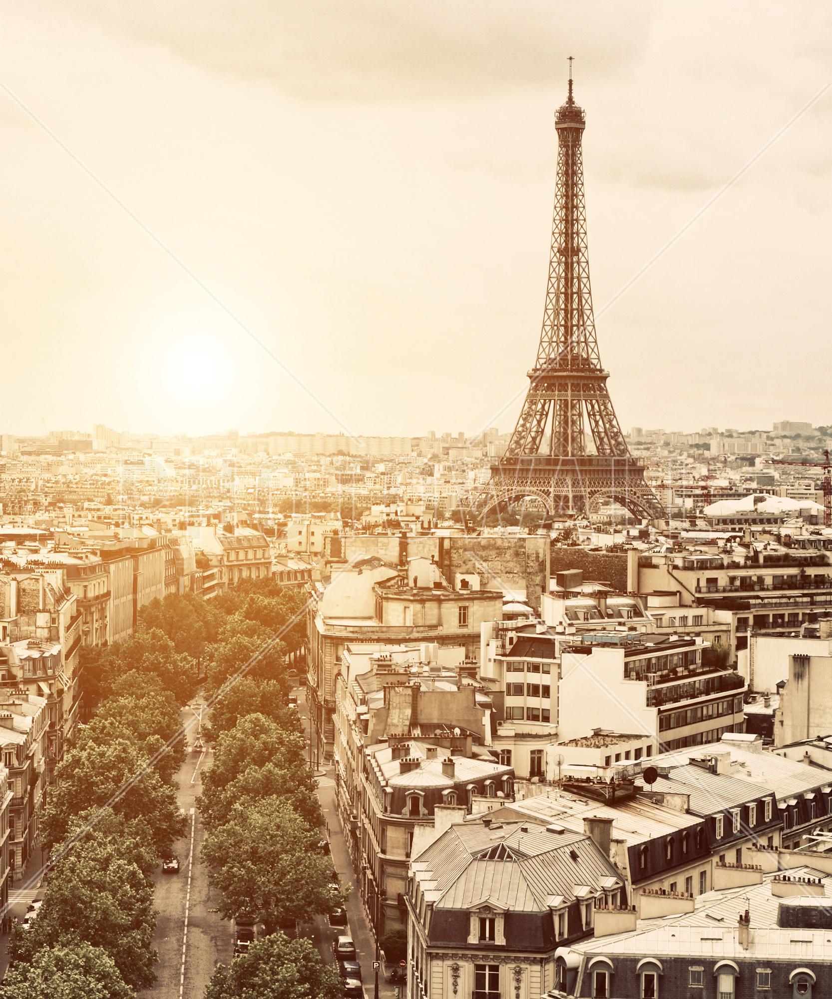 Wall Mural   Paris   Eiffel Tower Part 53