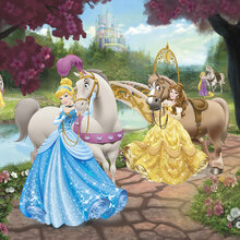 Disney princess wallpaper wall murals for Disney princess wallpaper mural uk