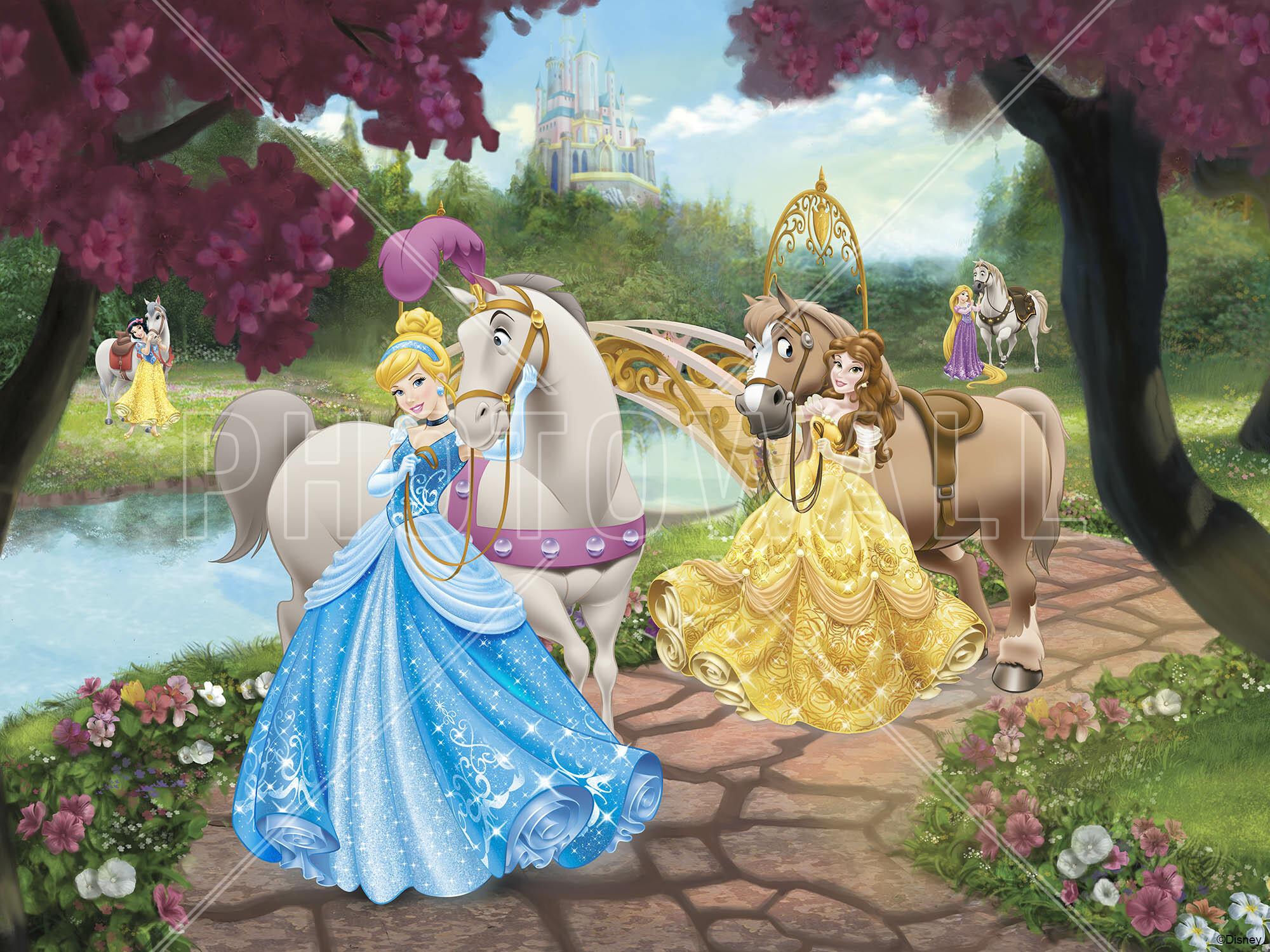 Wall Mural   Disney Princess   Horses Part 98