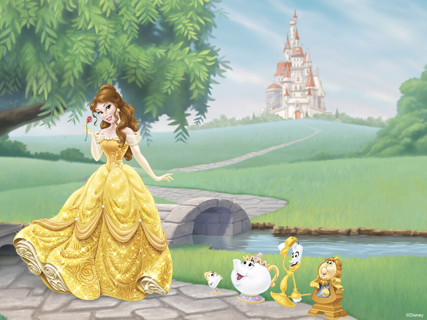 Disney princess belle wall mural photo wallpaper for Disney princess wallpaper mural