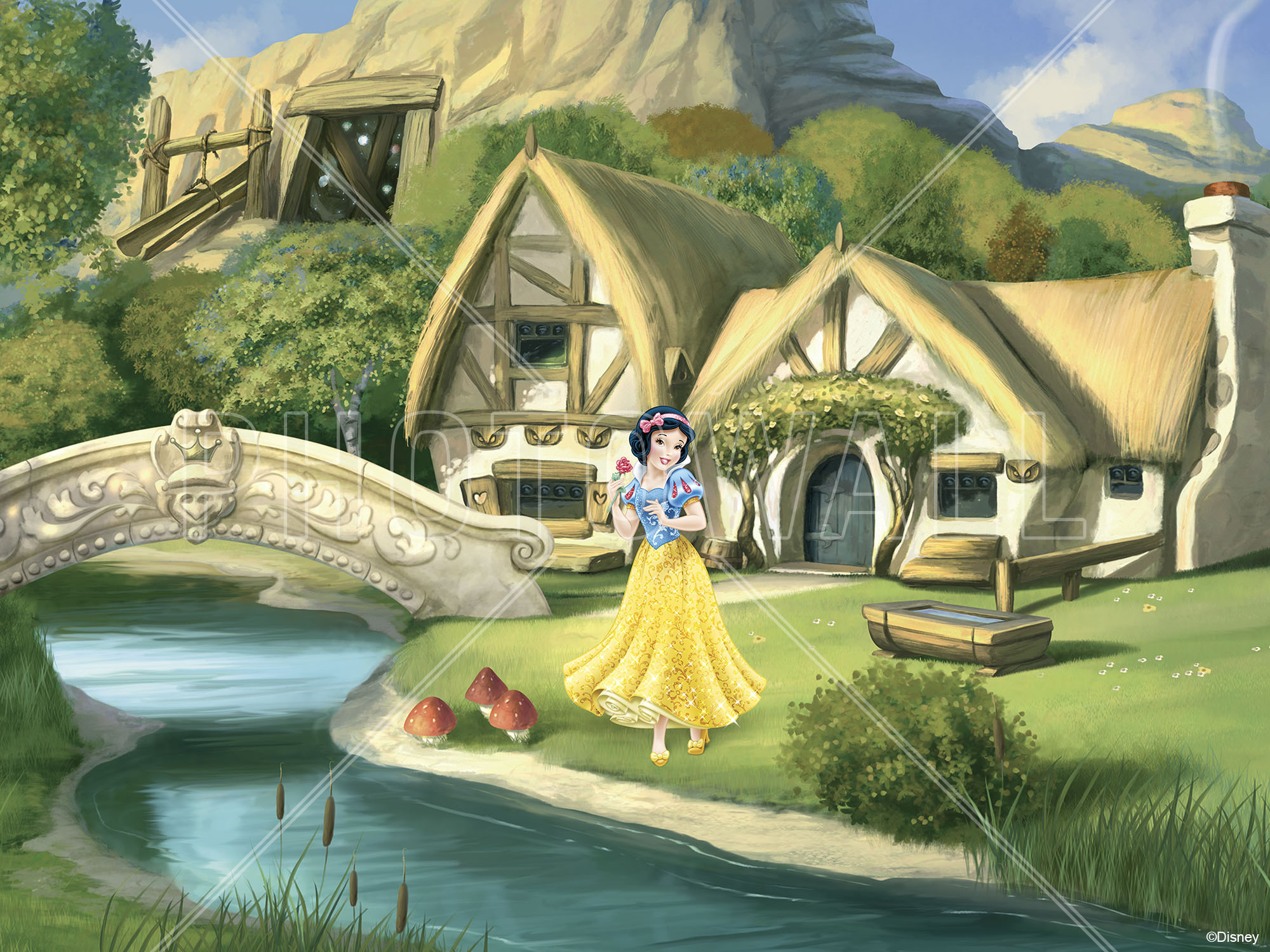Wall Mural   Disney Princess   Snow White Part 46