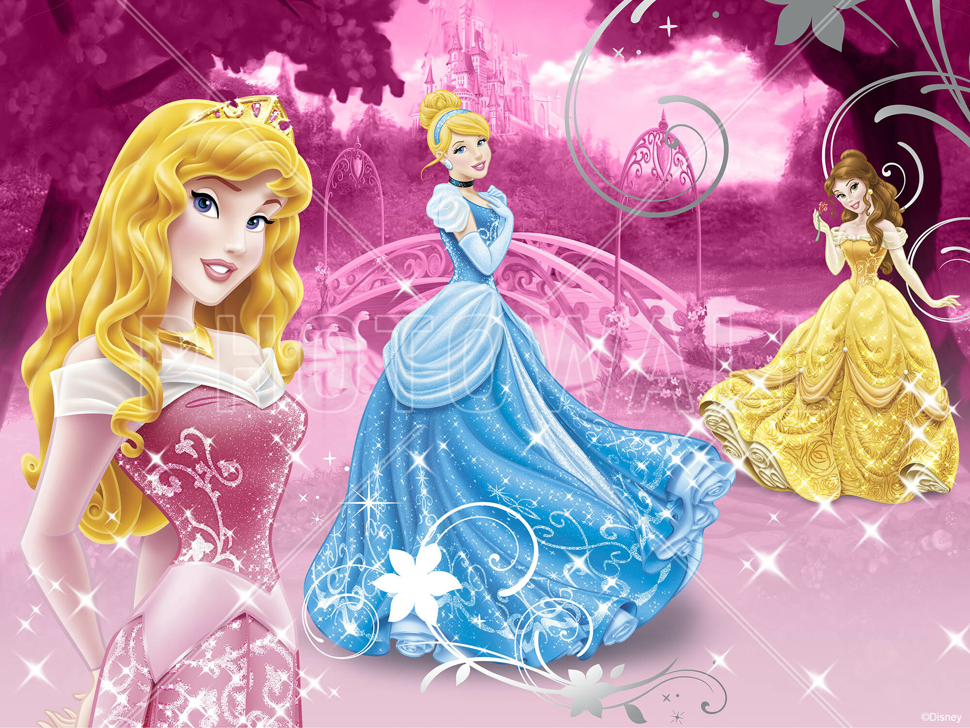 Wall Mural   Disney Princess Pink Part 97