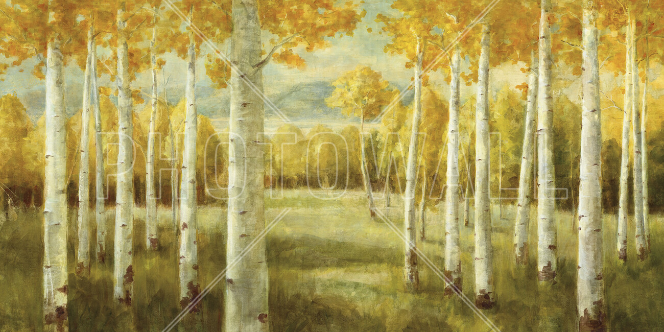 Aspen birches wall mural photo wallpaper photowall for Aspen wall mural