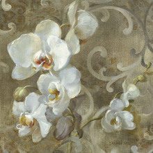 Canvas print - White Orchid Square